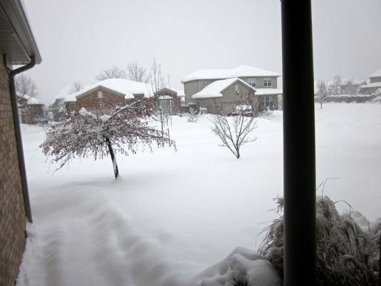 Snow nov 24 2013 003